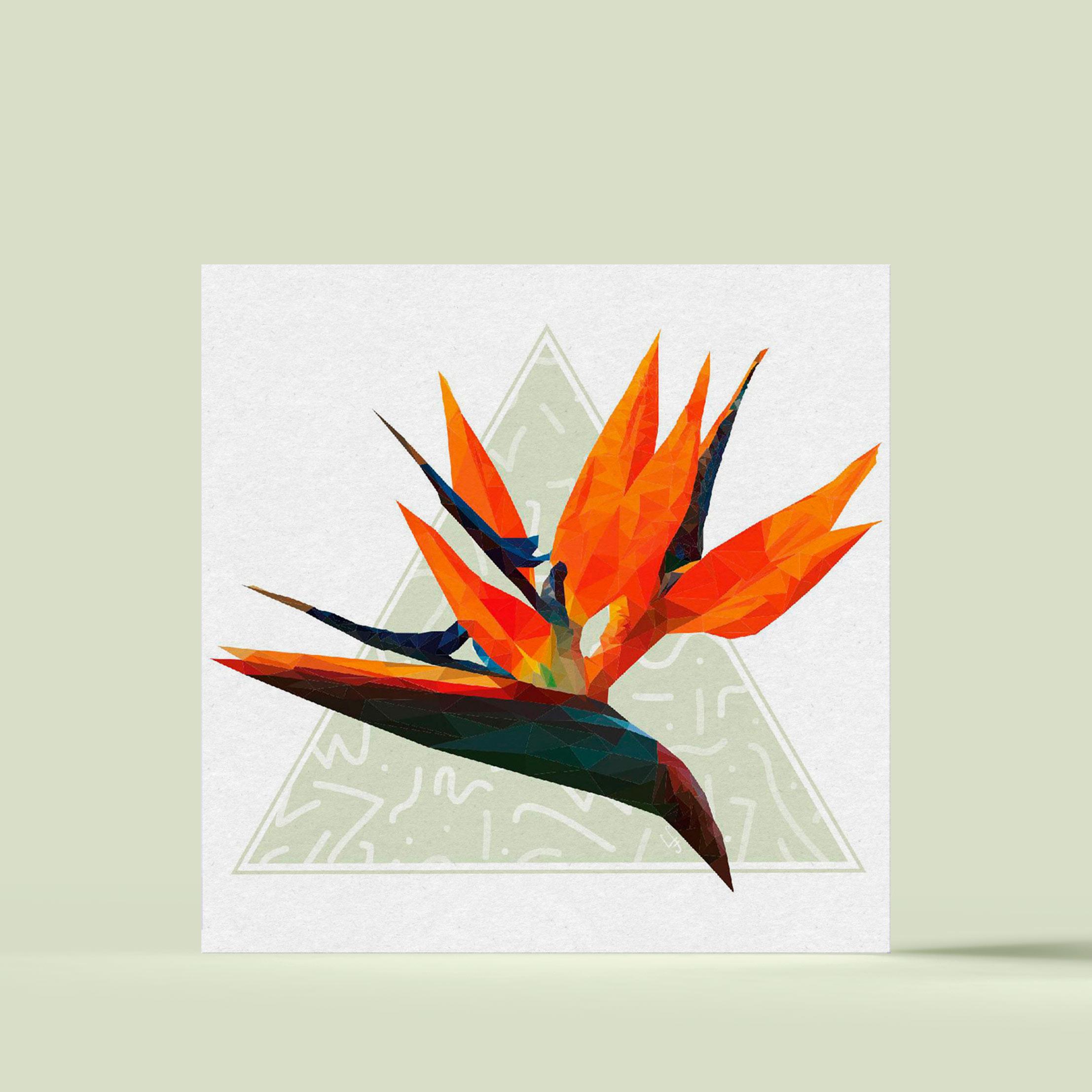 Oiseau du paradis - Illustration